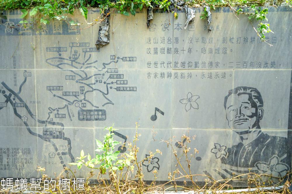 大窩文史生態園區生態導覽