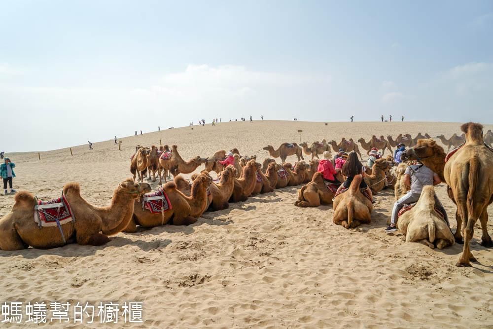 寧夏旅遊攻略