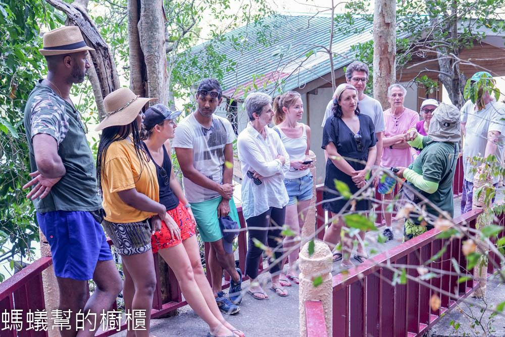 蘭卡威丹絨魯紅樹林地質公園
